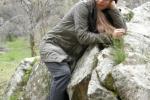 vera-on-the-rocks