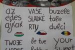 several-languages