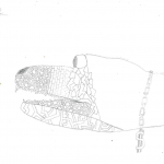 Kezek_Bermuda osztály, 7. évfolyam_Page_07