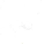 Kezek_Nápol(y)i osztály, 7. évfolyam_Page_09