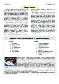 Recept minta (pdf.)